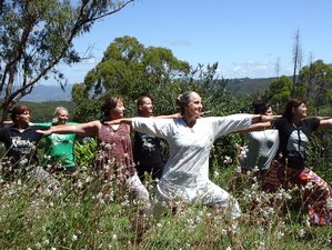 4 Days Zen Buddhist Yoga Retreat in Queensland, Australia