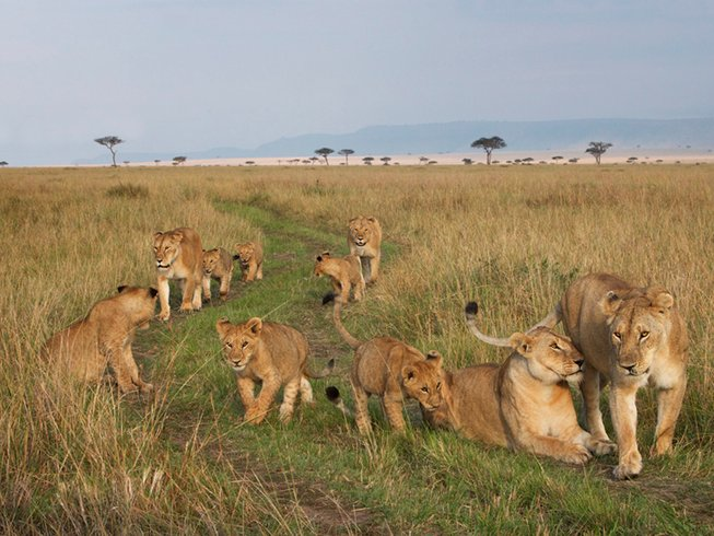13 Days Luxury Photography Safari in Kenya