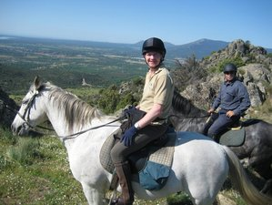 4 Day Horse Riding Trail in Guadarrama National Park near Madrid