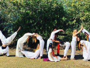 29 días de profesorado de yoga de 200 horas en Rishikesh, Uttarakhand