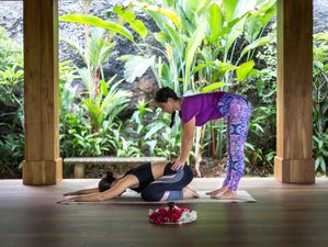 4 Day Yoga, Hiking, and Paddle Boarding Holiday in Digana of the Central Sri Lankan Hills