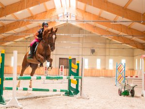 7 Days Jumping Training and Horse Riding Holiday in Galiny, Poland