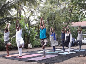 7 Day Meditation, Kalari, and Yoga Retreat in Kochi