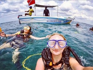 5 Day Beginners Diving - PADI Open Water Course in Weligama, Southern Province