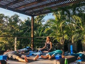 8 Day Ayurveda, Yoga, Massage, and Meditation Retreat in Puerto Vallarta
