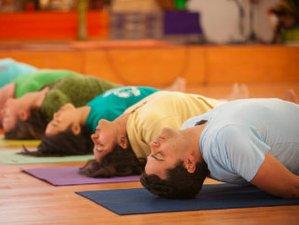 6 días retiro de yoga y curso de pensamiento positivo en California, EUA