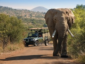 3 Days Pilanesberg National Park Lodge Safari in South Africa