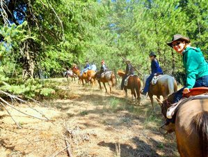7 Day Late Summer to Fall Ranch Vacation in Harrison, Idaho