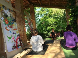 6 Day Intuitive Painting & Yoga Retreat, 17th C. Tuscan Farmhouse & Olive Grove
