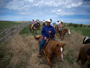7 Days Authentic Ranch Vacation in New Raymer, Colorado