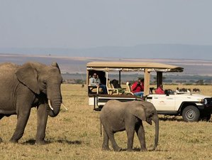 4 Days Holiday Safari in the Great Rift Valley Lakes, Kenya