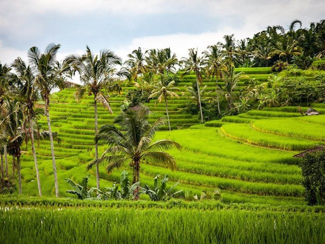 3 Days Culture and Culinary Vacations in Bali, Indonesia