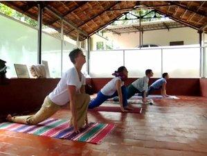 20 Days 200hr Yoga Teacher Training in Barcelona, Spain