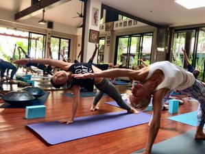 8 Day Christmas Fitness and Yoga Holiday in Koh Samui, Surat Thani
