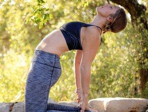 7 Day Break Free Yoga Retreat in Sayulita, Nayarit