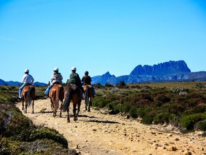 4 Day Awesome Trail Riding Holiday at Cradle Mountain, TAS, Australia