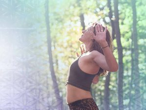 7 Day Online 8 Yogi Breath Techniques Course to Boost Immunity, Resilience, and Inner Peace