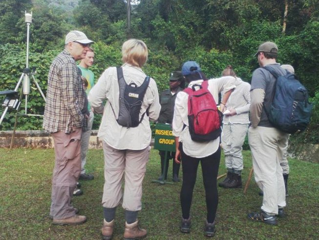 5 Days Chimp and Gorilla Tracking Safari in Uganda