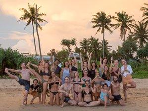 22 Day 200-Hour Alignment Vinyasa Yoga Teacher Training at Koggala Lake