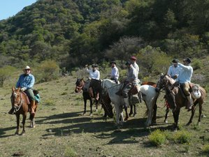5 Day All-Inclusive Gaucho Ranch Horse Riding Holiday in Salta