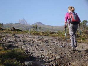 5 Day Kenya Safari and Trekking in Sirimon Route