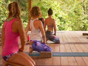 7-Daagse Caribische Tour, Surf en Yoga Retraite in Costa Rica