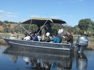 6 Days Dreamers Safari Tour in Botswana