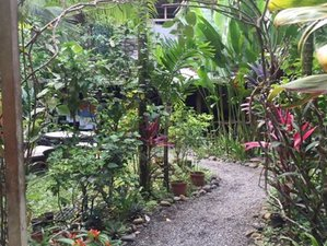 "7 Day ""Freedom Ascension"" Yoga Retreat for Women in Puerto Viejo de Talamanca, Limon"
