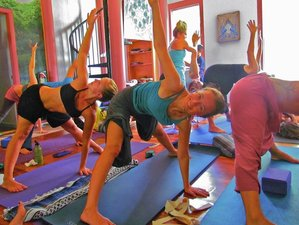 6 Days Lighten Up Detox Yoga Retreat Florida