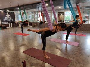 24 Days 200hr Hatha, Ashtanga Vinyasa, Yin, Aerial and Acro YTTC with Ayurveda in Rishikesh, India