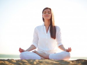 Self-Paced 50-Hour Online Meditation Teacher Training