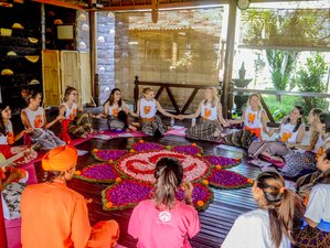 25 Days 200-Hour Hatha and Vinyasa Yoga Teacher Training, Bali