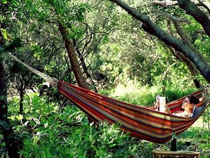 7 Days Relaxation and Vinyasa Yoga Retreat in Byron Bay