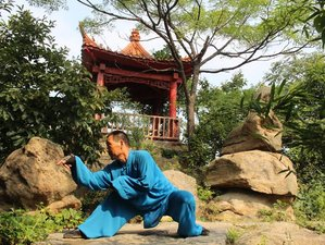 7 Month Traditional Kung Fu Training with Meihua Poles in Linyi, Shandong