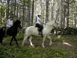 3 Day Horseback Riding across the Scenic Countryside in Waitsfield, Vermont