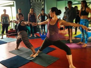 15 Day Rejuvenating Yoga Retreat in Pahoa, Hawaii