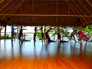 7 Days 'Let Your Intuition Speak' Meditation & Yoga Retreat Bali