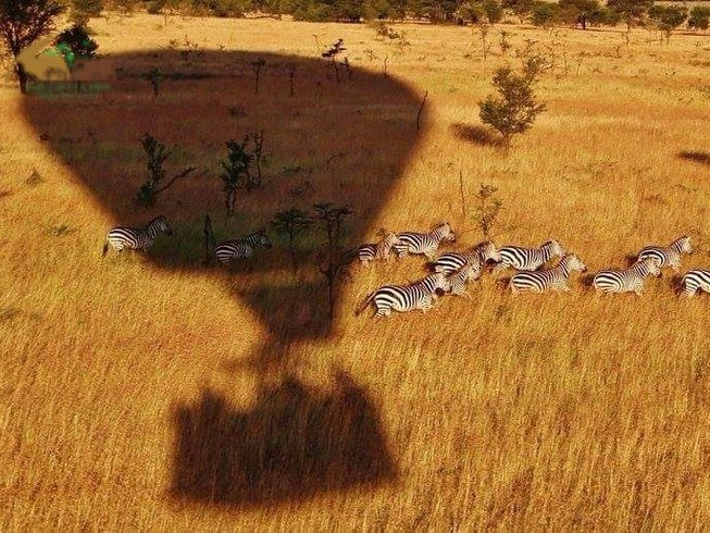 9 Days Ultimate Safari Tour in Kenya