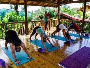 8 días retiro de yoga y Bodhi Flex surf en la provincia de Puntarenas, Costa Rica