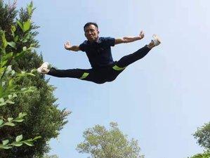 1 Month Shaolin, Sanda, Baji, Wing Chun, Tai Chi, and Qigong in Siping, Jilin