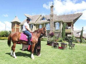 4 Day Light Riding Program for All Levels in the Mount Kenya Region, Kenya