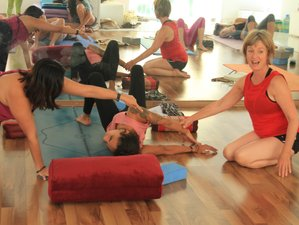 9 Day 100-Hour Online Five Elements of Traditional Chinese Medicine and Yin Yoga Teacher Training