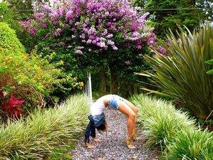 7 Days Meditation and Yoga Retreat in Panama