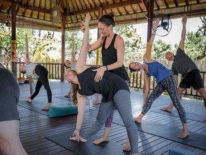 39 Day 300-Hour Advanced Vinyasa & Yin Yoga Teacher Training in Nusa Lembongan, Bali