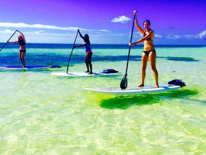 3 Days Paddleboard Yoga Teacher Training in Florida