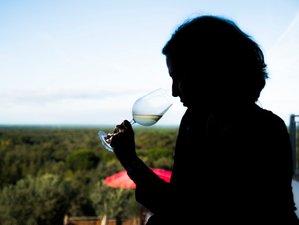2 Days Wine Holiday in Grândola, Portugal