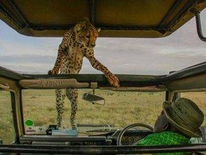 3 Days Safari in Amboseli National Park, Kenya
