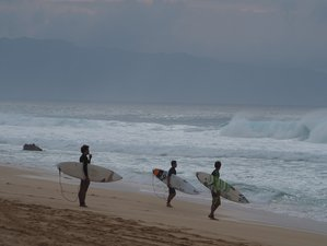 7 Days Surf Camp in Waialua, Hawaii, USA
