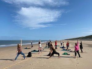 7-Daags Yoga & Nature Summer Retreat in Castricum