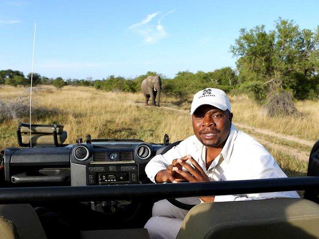 2 Days Treehouse Safari South Africa